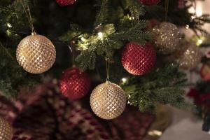 Oferty świąteczno-noworoczne 2020/2021